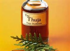 Warts, Thuja Oil & Garlic Cloves Taped over Wart  Lazy salesxpert Julie Sulter Don TolmanThere are at least 60 types of the  human papillomavirus virus  (HPV) including warts, which are a type of the infection. Warts can grow on all parts of your body including the skin, the mouth, the genitals and the rectal area. The reason that some people seem to get warts easier than others is because some are more naturally resistant to the HPV virus. Genital warts are a particular kind of wart. They…