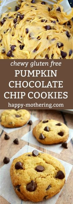 Are you looking for a gluten free cookie recipe that is full of fall flavors? Give this Chewy Gluten Free Pumpkin Chocolate Chip Cookies recipe a try. #cookierecipe #pumpkin #chocolatechipcookie #glutenfree #desserts #glutenfreecookies