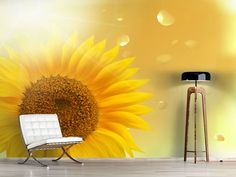 Foto #Tapete Sonnenblume im Morgentau Environment, Photos, Morning Dew, Self Adhesive Wallpaper, Sunflowers, Photo Wallpaper, Wall Papers, Nice Asses