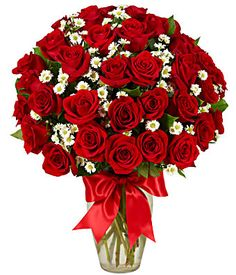 Rose Delivery, Send Roses, Roses Today | FromYouFlowers