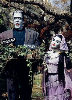 The Munsters gardening, 1960s The Munsters, Munsters Tv Show, Scream Queens, La Familia Munster, Humor Satirico, Los Addams, Dark Romance, Herman Munster, Lily Munster