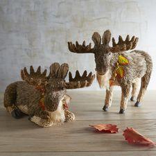 Natural Standing & Sitting Moose