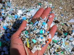 Plastic Soup is what remains after sun and waves break down waste. This crap outnumbers plankton by a 2 to 1 ratio. Your sea food is contaminated with the BSP leached from Plastic Soup.