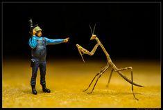 Alien Invasion! | par Kay Burn Lim