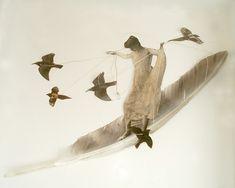 Far by Feather  Lousie Richardson