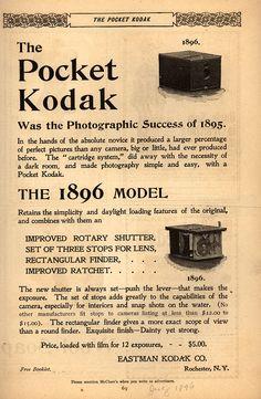 Kodak Teeters On Brink Brought Low By >> 19 Top Logos Stuff Images Animal Logo Logo Designing Branding Design