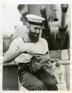 He holds the fox's head, and he smiles as he brushes its dead fur. And sailors wonder why mermaids drown them.