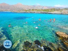 Active trip to Crete greece snorkel holidays - Zorbas Island apartments in Kokkini Hani, Crete Greece 2020 Holiday News, Walking Holiday, Heraklion, Greece Holiday, Crete Greece, Beach Holiday, Public Transport, Snorkeling, Night Life