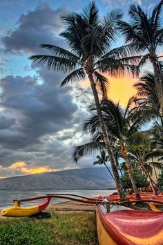 Maui... First BIG trip with the family....a reason to go to college!