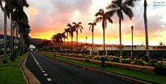 Temple walk  #temple #LDS #Hawaii #palmtree #sunset #Laie #walk #stunning