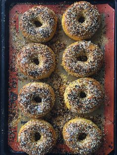 An easy recipe for authentic NY bagels that you can make anywhere in the country! This version uses an everything topping but you can make them plain too! Ny Bagel, New York Bagel, Fudge Recipes, Vegan Recipes, Cooking Recipes, Top Recipes, Crockpot Recipes, Yummy Recipes, Making Pizza Dough