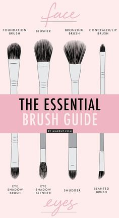 The Essential brush guide. Eyes makeup. Infography.