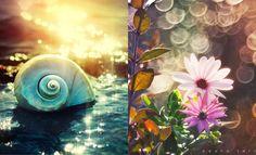 35 Beautiful Nature Photographs by Pedro Terrinha - Colorful Showcase. Follow us www.pinterest.com/webneel