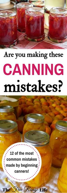 Are You Making These Canning Mistakes? Canning is one of the best ways to preserve your summer produce. Whether you a beginning canner or not, are you making these canning mistakes? Canning Pickles, Canning Tips, Home Canning Recipes, Canning Food Preservation, Preserving Food, Konservierung Von Lebensmitteln, Canning Vegetables, Roh Vegan, Canned Food Storage