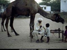 Людина і тварина - картинки на телефон: http://wallpapic.com.ua/national-geographic-photos/human-and-animal/wallpaper-38299
