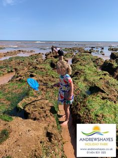 Enjoy rockpooling near Andrewshayes Holiday park. Sidmouth is a great place to rockpool and for exploring after. Devon Holidays, Uk Beaches, Fossil Hunting, Lyme Regis, Jurassic Coast, Holiday Park, Rock Pools, Weekend Breaks, Luxury Holidays