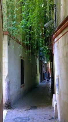 Calle Verde, Sevilla