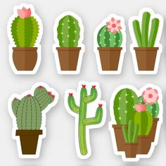 Cactus Stickers, Cute Stickers, Cactus Craft, Personalized Stickers, Personalized Notebook, Hybrid Tea Roses, Crochet Patterns For Beginners, Easter Crafts For Kids, Craft Stick Crafts