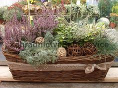podzimní dekorace do truhlíku - Hledat Googlem Outdoor Flower Planters, Outdoor Flowers, Dry Fruit Box, Container Gardening, Fall Decor, Flower Arrangements, Succulents, Decorative Boxes, Autumn