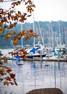 WSHG.NET | Gig Harbor — A Graceful Rebirth of a Historic Town | Featured, People & Places | December 5, 2014 | WestSound Home & Garden