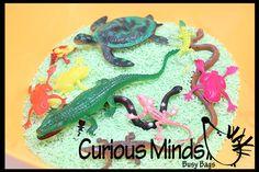 Reptile Sensory Bin (or play set) - Toddler, Waldorf, Montessori