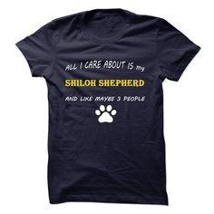 (Tshirt Amazing Design) All I Care About Is My Shiloh Shepherd And Like Maybe 3 People  Discount Hot  Do you love your Shiloh Shepherd? This shirt is A MUST HAVE  Tshirt Guys Lady Hodie  SHARE and Get Discount Today Order now before we SELL OUT Today  #tshirt #pinteres #Tshirtamerican #Tshirtjob #Tshirtnam