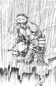 Teenage Mutant Ninja Turtles - Raphael by Brett Booth Ninja Turtles Shredder, Ninja Turtles Art, Teenage Mutant Ninja Turtles, Tmnt, Comic Books Art, Comic Art, Book Art, Brett Booth, Samurai