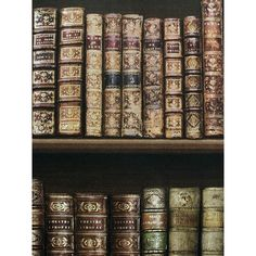 This Antique Bookcase Wallpaper in rich tones of brown and gold features a beautiful illustrated style bookcase design. Free UK delivery available Wallpaper Door, Wall Stickers Wallpaper, Book Wallpaper, Door Stickers, Antique Bookcase, Stained Glass Window Film, Door Murals, Stainless Steel Doors, Glass Bathroom