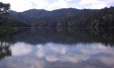 Bon Tempe Lake, Fairfax CA