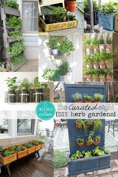 The Curated Eight: DIY Herb Gardens  Plant your herbs in an old cloth shoe caddy. in flower pots that double  as a privacy wall, wood pallets, wine bottle boxes with old stamped silverware, wall mounted mason jars, an old soda crate, vintage tea tins, and old seed starting tins hanging vertically with chains.