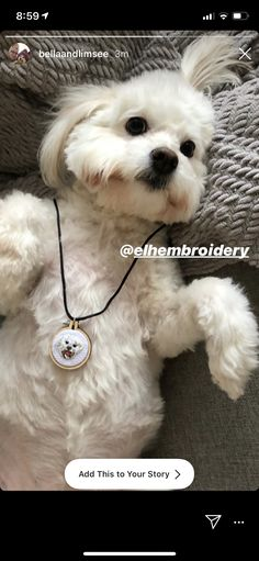 The lovely Limsee and her gorgeous pup Bella Portrait Embroidery, Wooden Embroidery Hoops, Embroidered Gifts, Thing 1, Wooden Shapes, Best Resolution, Animal Faces, Black Nylons, Pet Portraits