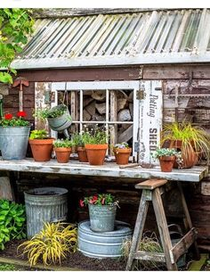 boards across saw horses serve the purpose of potting bench