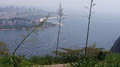 As belezas e agruras do Morro da Babilônia, no Rio