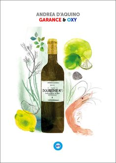 ANDREA D'AQUINO / Wine Illustration / @ : oxy-illustrations@orange.fr