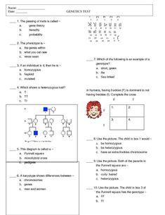 What Causes Diseases Homework Worksheet Quizzes Grade 8