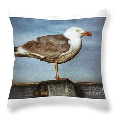 "Seagull Perched  Throw Pillow 14"" x 14"""