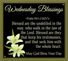 Good Morning Everyone Have A Blessed Day Blessed Wednesday, Have A Blessed Day, Psalms Quotes, Biblical Womanhood, Sisters In Christ, Psalm 119, Whole Heart, God Bless You, Good Morning Everyone