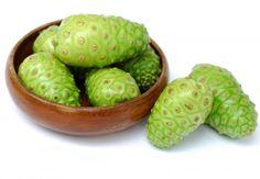 Il fruttoNoni fornisce al metabolismo gli enzimi che permettono  di riprendere le redini in mano e per gestire le funzioni e ristabiliscono la salute e benessere al corpo. Da più di 2000 anni glisciamani polinesiani usano foglie, radici, cortecce, fiori e i frutti della…