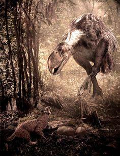 Un Lynx rexroadensis es sorprendido por la mamá Titanis walleri mientras intenta zamparse sus huevos. Una escena del pleistoceno de Florida traída a nuestros ojos por Velizar Simeonovski