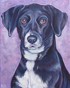 Kylie the Black Lab Mixed Breed Dog Custom Pet Portrait with Lavender Background. Acrylic Paint on Canvas, 8x10 Order your own or give the perfect gift: WWW.PETPORTRAITSBYBETHANY.COM   #petportraits #petportrait #custmopetportrait #custompetportraits #lab #labs #labrador #doglover #doglovergift #petlover #blacklab #blackabs #labradorretriever #blacklabrador #petmemorial #petgift #doglover #petlovergift #customdogportrait