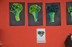 Broccoli; steel ecoline en bovenin propjes groen papier