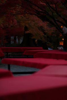 at Eikando Zenrinji higashiyama in Kyoto by Sorakiyo