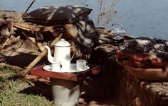 Canecas, bules e outros utensílios de ágata eram comuns na cozinha da vovó e, principalmente, nas casas do interior. Resgatar objetos feitos com este material remete ao passado e traz um charme retrô a qualquer cafezinho. Inspire-se!