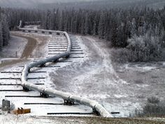 Started in 1974 and, On May the Trans-Alaska Pipeline System was completed, although the first barrel of oil wouldn't reach Valdez until July. Churchill, Barack Obama, Renewable Energy News, Pipeline Construction, Gas Pipeline, Environmental Issues, Oil And Gas, View Source, Geology