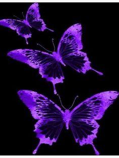 Purple Butterfly Wallpaper, Purple Wallpaper Iphone, Neon Wallpaper, Dark Purple Aesthetic, Lavender Aesthetic, Aesthetic Colors, Aesthetic Pictures, Violet Aesthetic, Aesthetic Collage