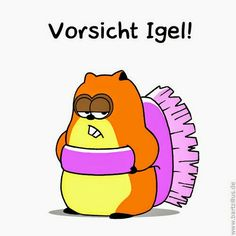 Hamster, Igel, Haushalt, Fun, Lustig, Power Yoga