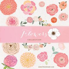 Flowers Collection clip art