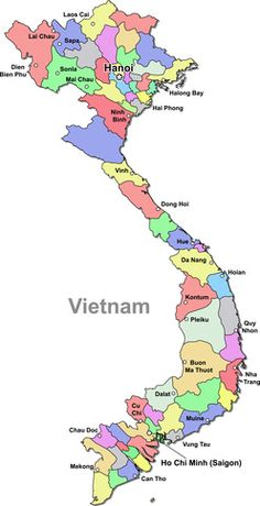 If I get laid off, I would like to go to Vietnam and teach English for a year.