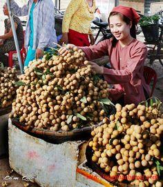 Hình ảnh trái nhãn lồng ngọt lịm thì trưởng thành cùng năm tháng của tuổi thơ của nhiều thế hệ và trở thành biểu tượng đặc trưng của người dân Hưng Yên