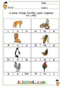 Best Tamil Worksheets for class 1